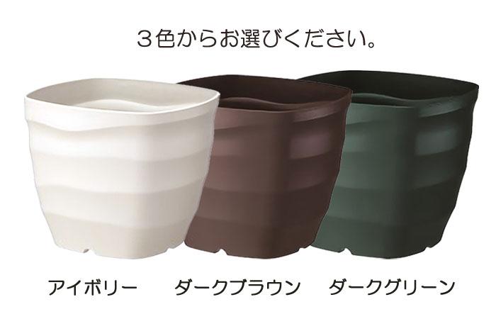 3色からお選びください