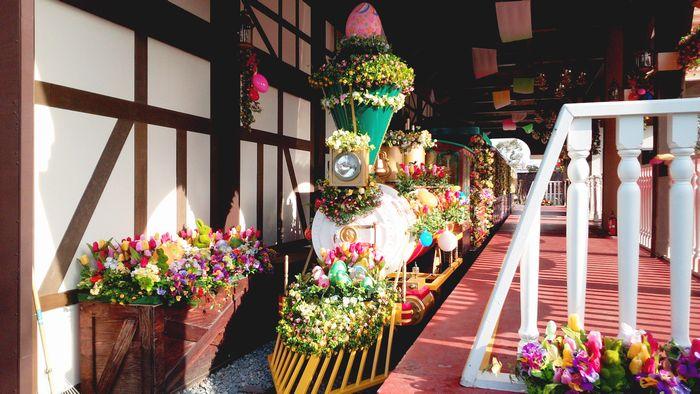 ひらパ―春装飾1