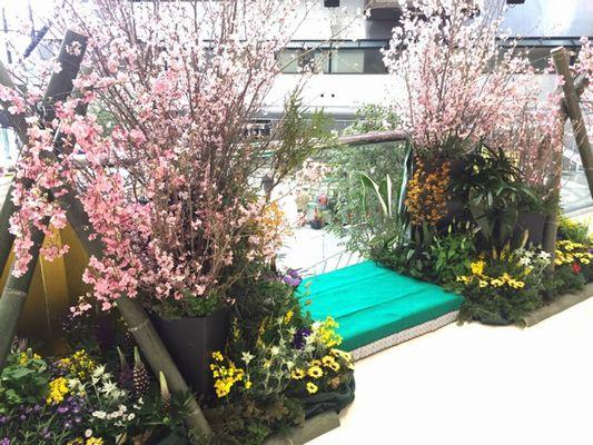 ツイン21桜装飾