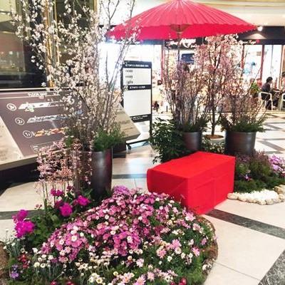 IMP桜装飾2